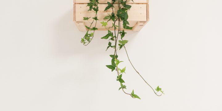 Décoration intérieure : le minimalisme pour le bien-être au quotidien